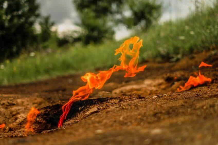 Focul-Viu-Lopătari-002-848x566